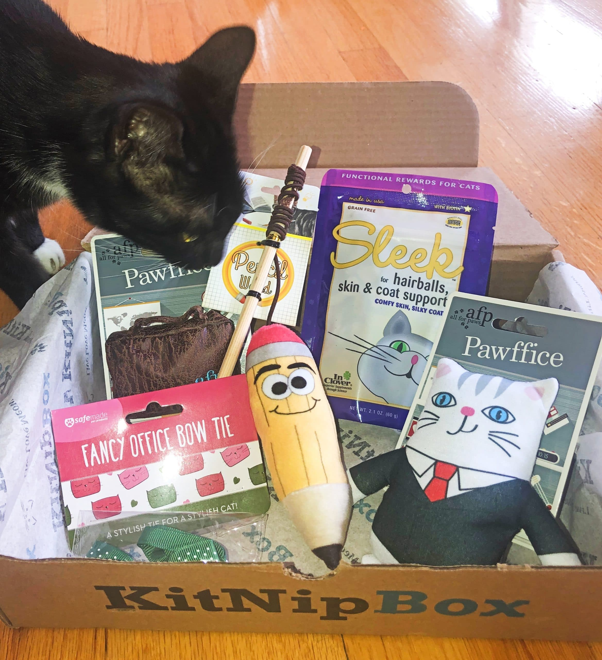 KitNipBox Reviews Unboxing