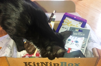 KitNipBox Reviews 2019