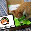 KittyCatKrate
